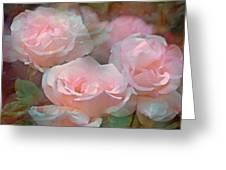 Rose 243 Greeting Card