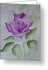 Rose 3 Greeting Card by Nancy Edwards