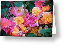 Rose 304 Greeting Card