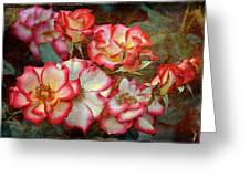 Rose 305 Greeting Card