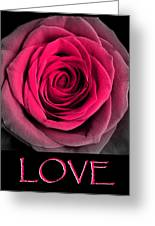Rose 33 Love Greeting Card