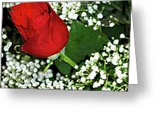 Rose And Baby's Breath Greeting Card