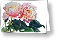 Pink And Yellow Rose Anne Greeting Card
