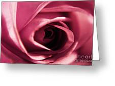 Rose Bud Petals Greeting Card