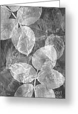 Rose Clippings Mural Wall 2 - Black And White Greeting Card