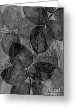 Rose Clippings Mural Wall - Black And White Greeting Card
