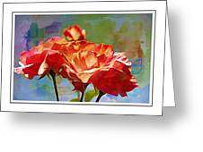 Rose Colours Greeting Card