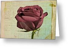 Rose En Variation - S23ct06 Greeting Card