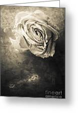 Rose From Another Day Greeting Card
