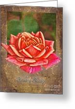 Rose Greeting Card Birthday Greeting Card