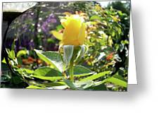 Rose In A Bubble Digital Art Greeting Card