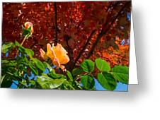 Rose In Autumn Greeting Card