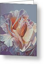 Rose 'marie Curie' Greeting Card