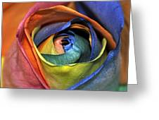 Rose Of Equality Greeting Card
