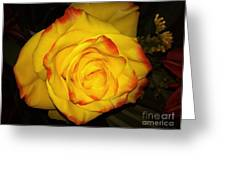 Rose Passion Yellow Impression Greeting Card