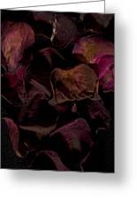 Rose Petals #4 Greeting Card