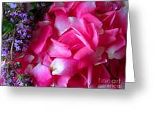 Rose Petals And Thyme Greeting Card by Margaret Newcomb