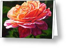 Rose Petals Catching Sunlight Greeting Card