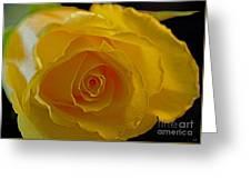 Rose -remeber Me Greeting Card