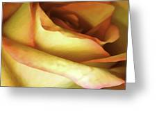 Rose Scan Softened Greeting Card