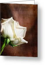 Rose - See Things Differently Greeting Card