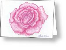 Rose Sketch  Greeting Card