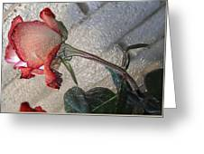 Rose To The Side 4 Greeting Card