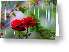 Rose Water Drops Greeting Card