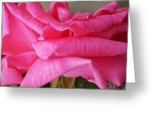 Roses Waves Greeting Card