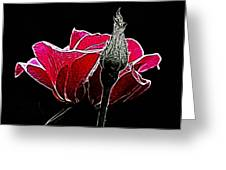 Rose With Friend Greeting Card