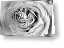 Rose With Heart B W Greeting Card