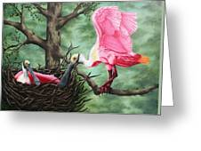Roseate Spoonbill Nesters  Greeting Card