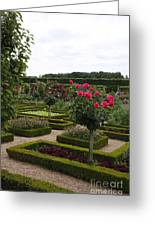 Roses And Cabbage -  Chateau Villandry Greeting Card
