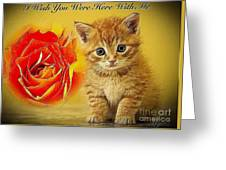 Roses And Kittens Textured Greeting Card