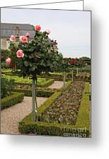 Roses And Salad - Chateau Villandry Greeting Card
