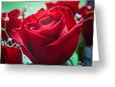 Roses In The Window Greeting Card
