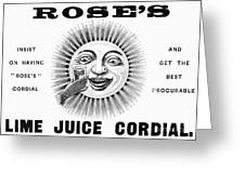 Roses Lime Juice Cordial Greeting Card
