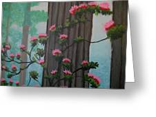 Roses On Misty Day Greeting Card