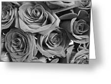 Roses On Your Wall Black And White  Greeting Card