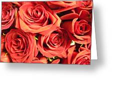Roses On Your Wall Greeting Card