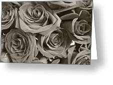 Roses On Your Wall Sepia Greeting Card