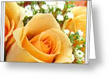 Roses Orange Blossoms Greeting Card