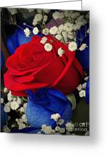 Roses - Red White And Blue Greeting Card