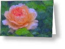 Roses Splendor Greeting Card
