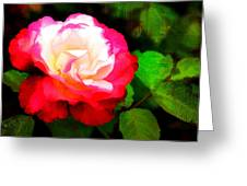 Rosie Red And White Greeting Card