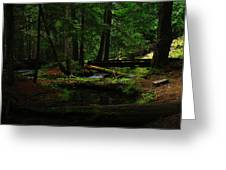 Ross Creek Montana Greeting Card