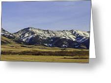Ross Pass Willows Greeting Card