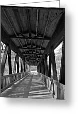 Roswell Bridge 1 Greeting Card