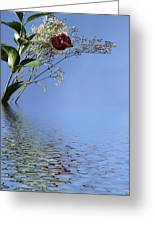 Rosy Reflection - Left Side Greeting Card