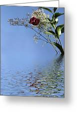 Rosy Reflection - Right Side Greeting Card